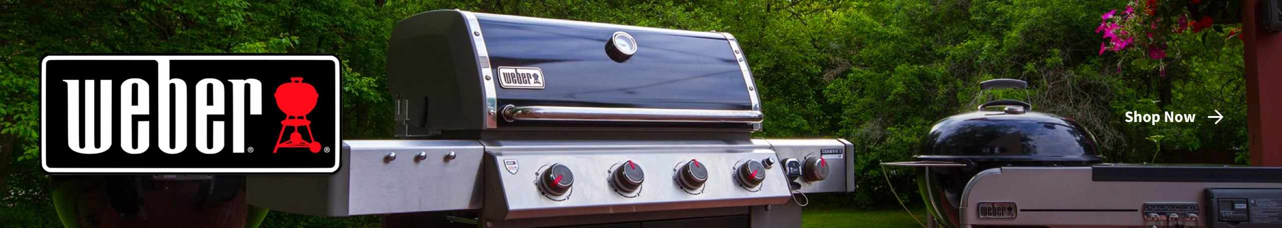 Shop Weber grills from Carr Hardware