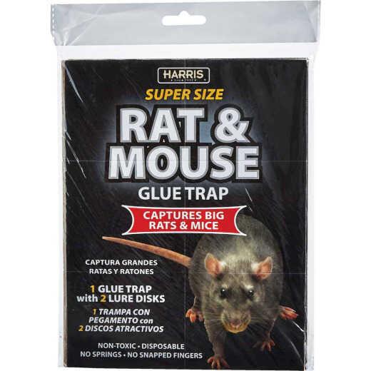 Harris Glue Rat & Mouse Trap